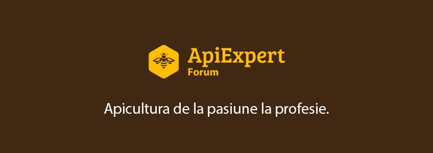 Lansare Forum ApiExpert