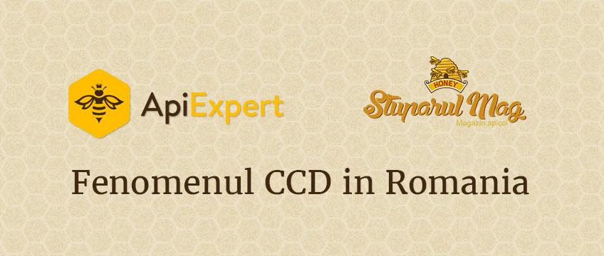 Prezentare ApiExpert: Fenomenul CCD in Romania (Disparitia familiilor de albine) – Cauze si Solutii